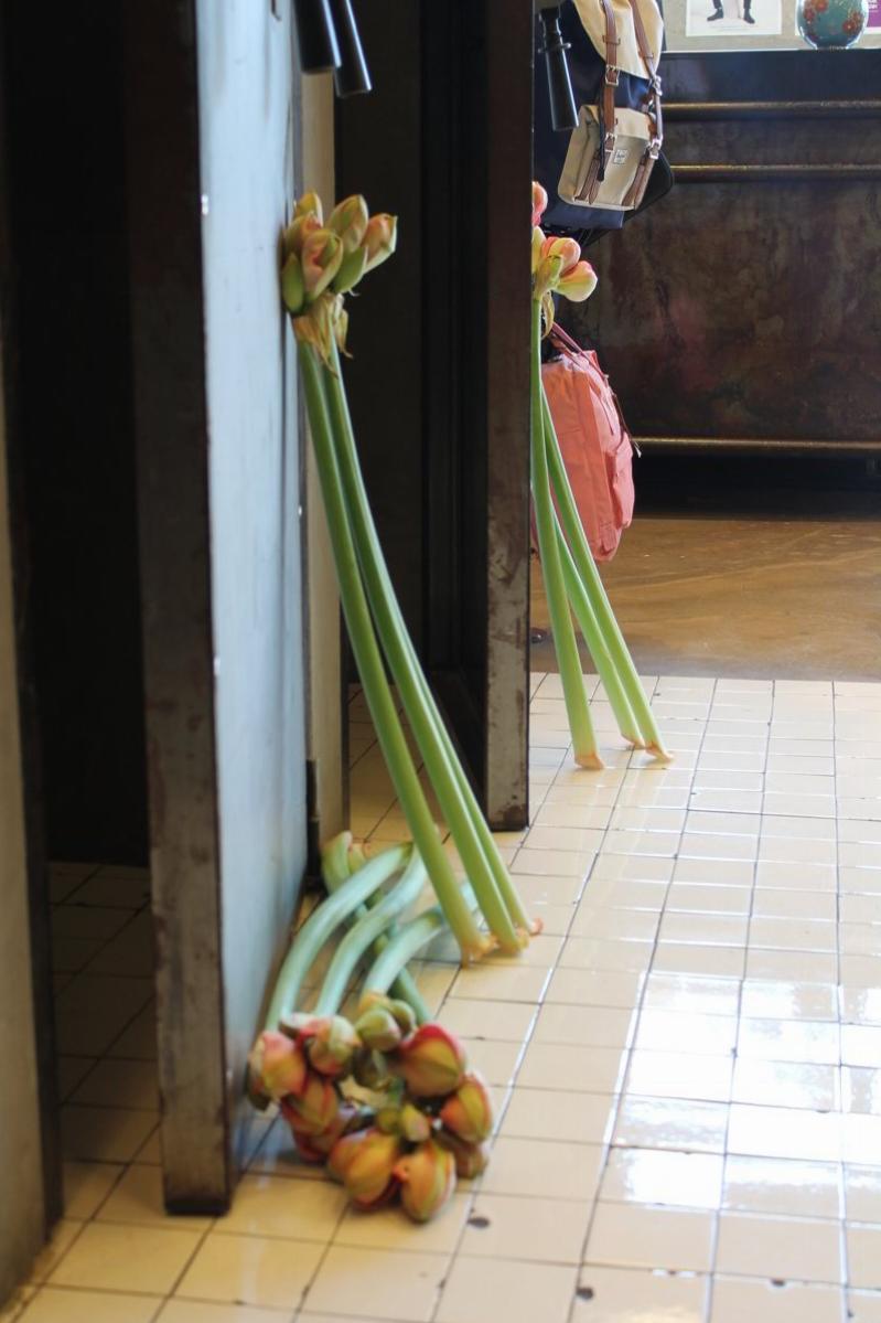 Poppy-flowers-allestimenti-negozio-07